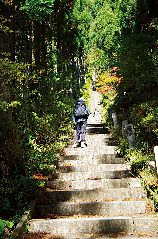 参道へ入ると迎えてくれる400段ほどの石段。