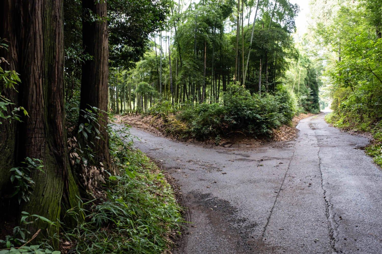 代官屋敷跡と推定される稲荷塚古墳周辺の薄暗い三差路。