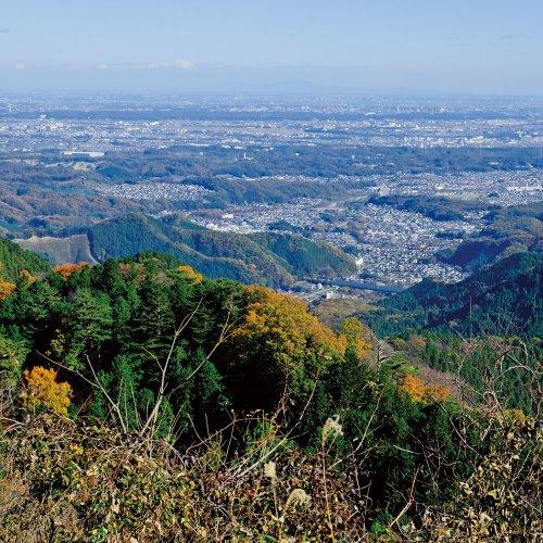 富士山や都心部を望む絶景尾根歩き、景信山から陣馬山【東京発日帰り山さんぽ】