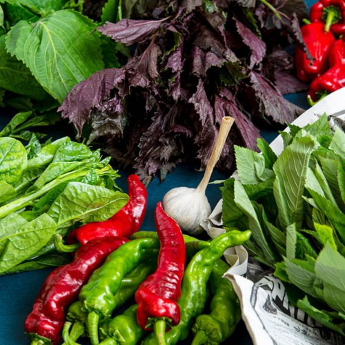 【お野菜取り寄せ体験記】家にいながら非日常!食材通販サービスでおいしい野菜を買ってみた